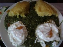 Spinazie puree met eieren